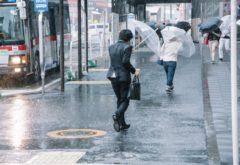 台風の話題が出る時期になりました
